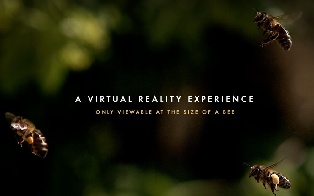 VR-and-advertising-virtual-reality-experience